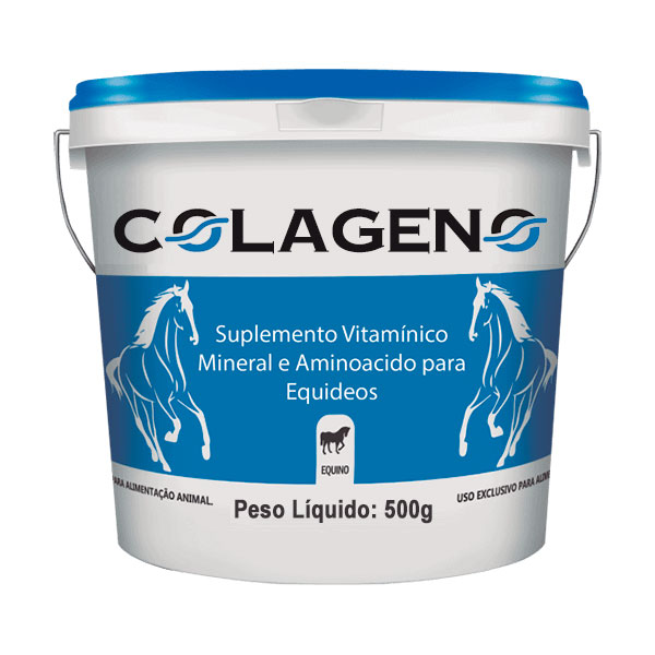 Nutritional Support for Joint health - Colageno